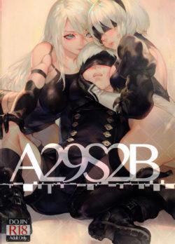 A29S2B – NieR Automata